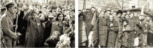 (Auschwitz-Birkenau State Museum Archives).