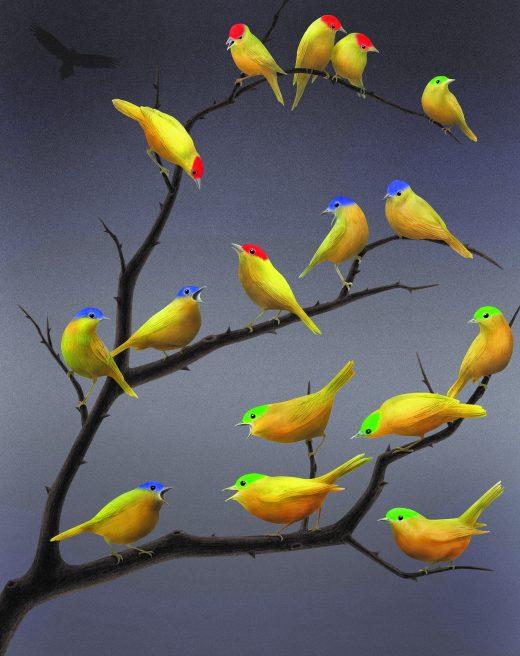 Illustration Karin Sunvisson. Three color of birds.